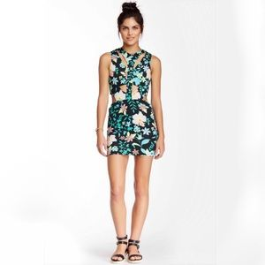 Lovers + Friends Got a Body Dress